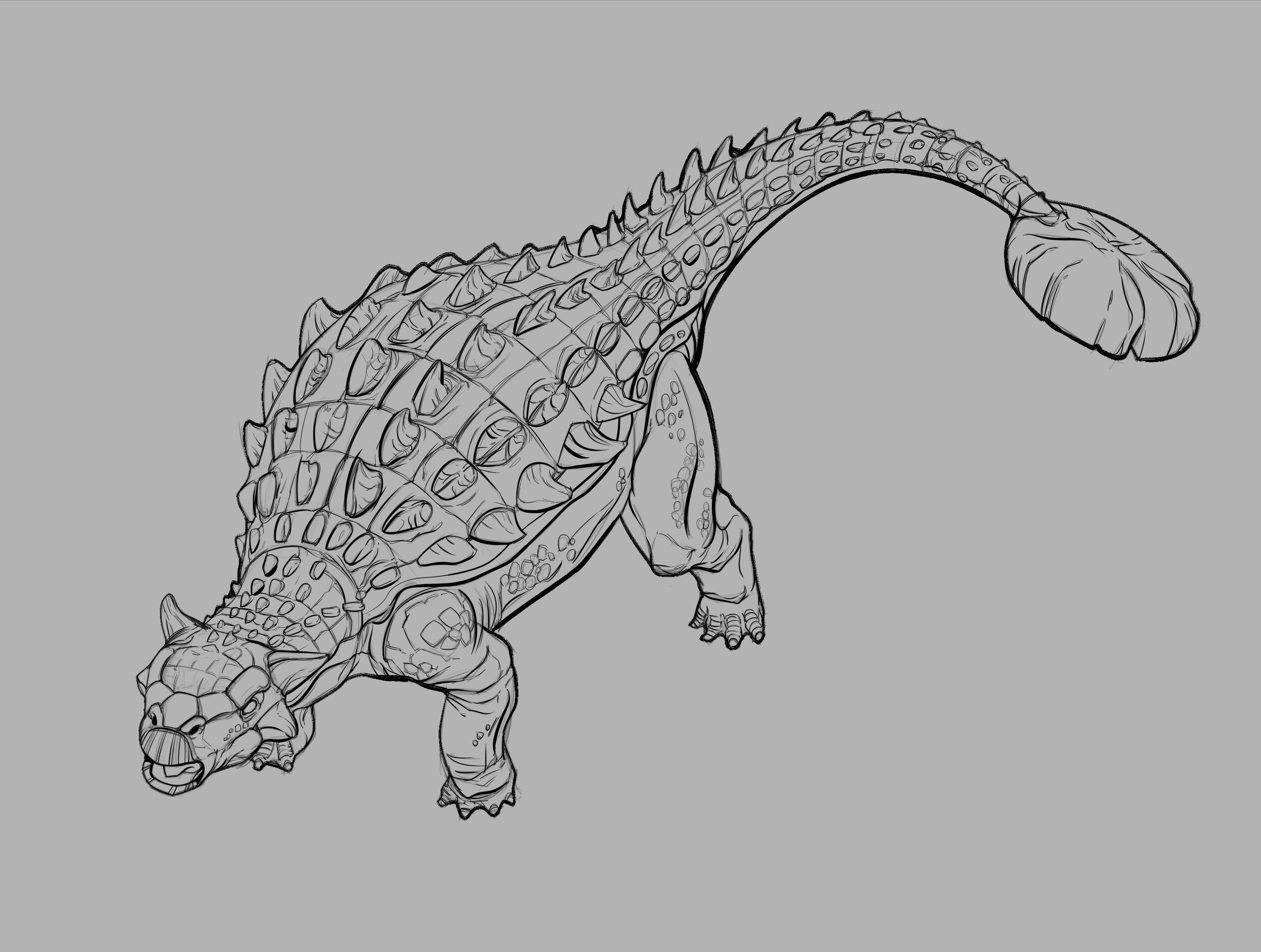 A. magniventris finished line work