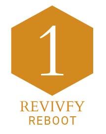 Revivify Reboot Yellow final.png