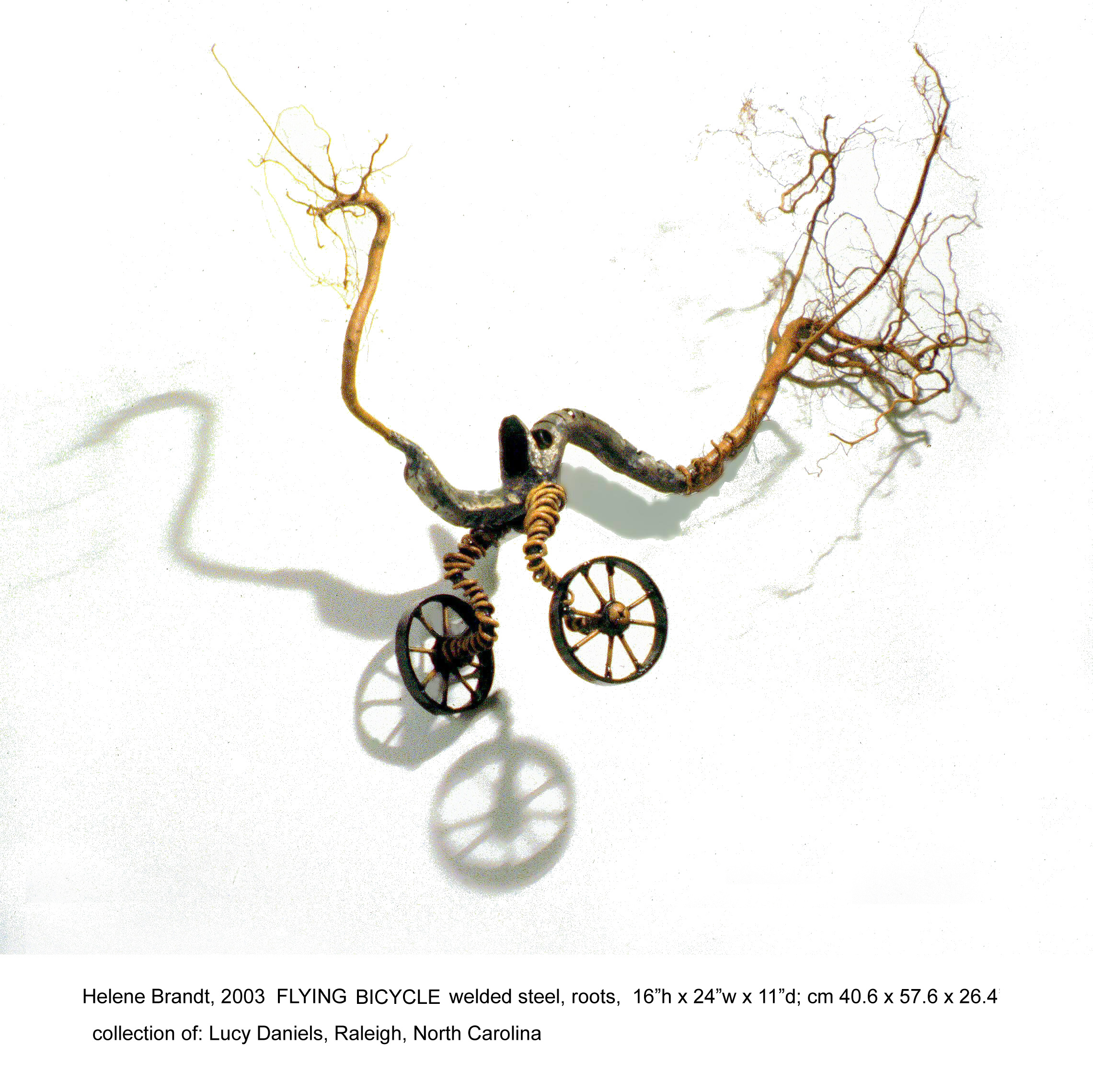 51-FlyingBicycle.png