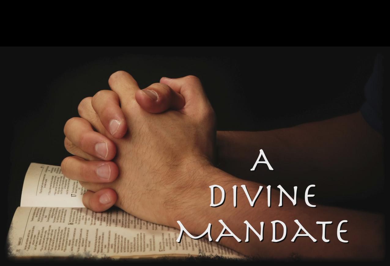 A Divine Mandate.jpg