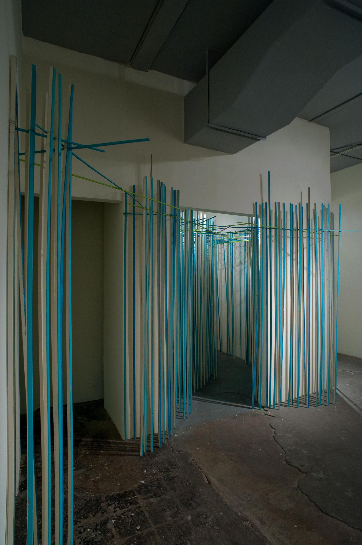 anticipacion (SA), 2009