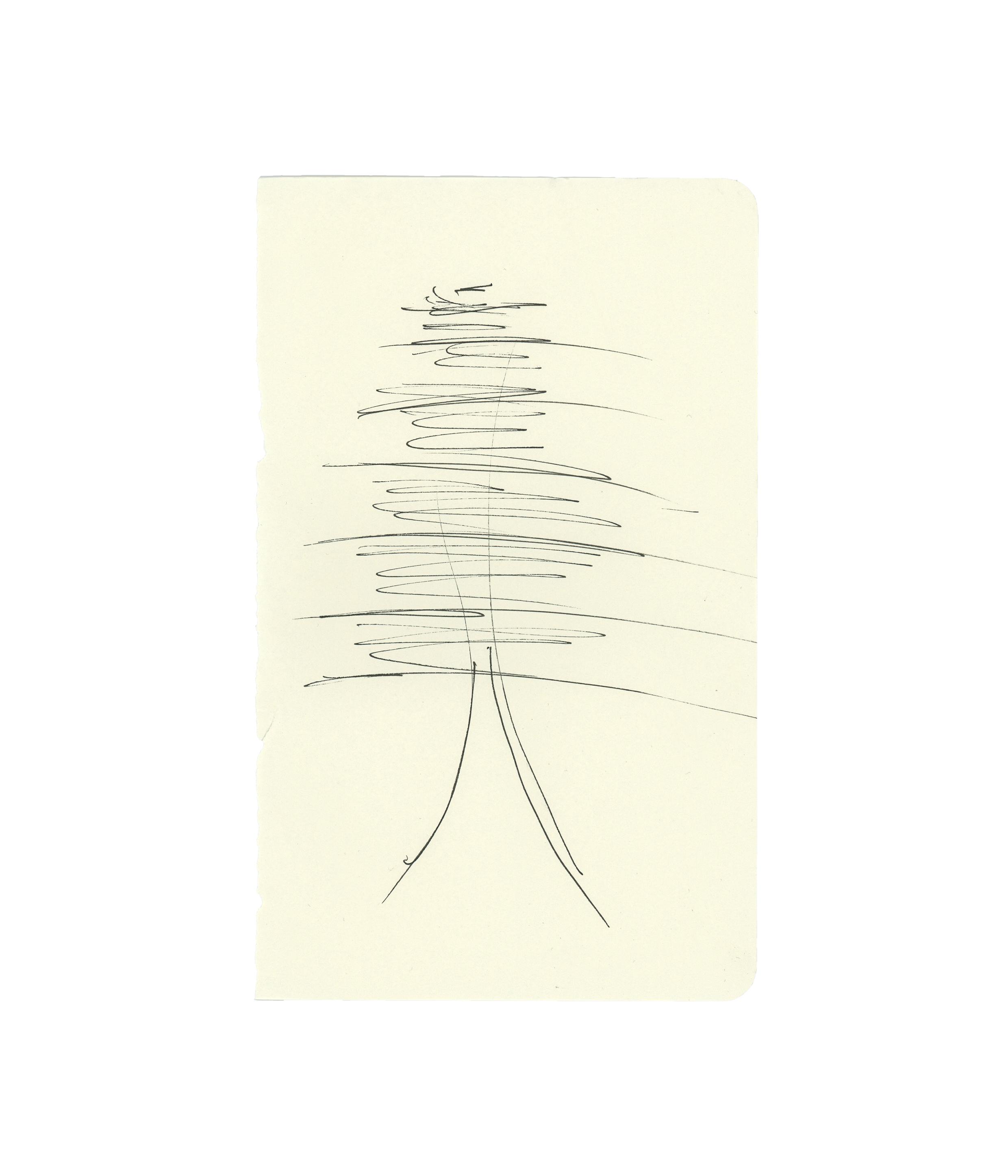 Pine drawing No. 2 - Allen