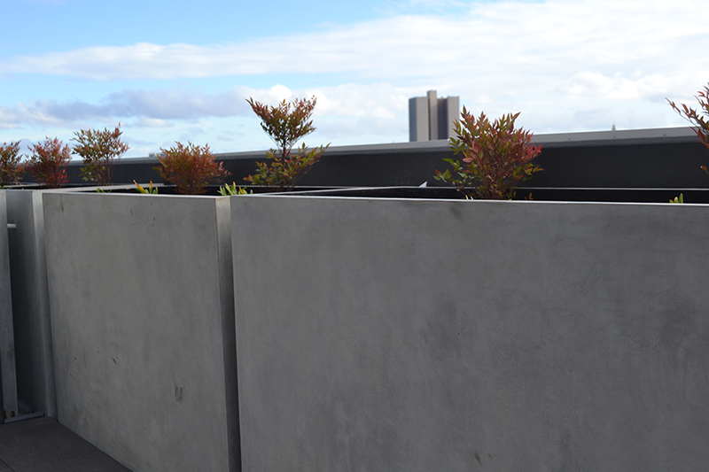 Custom designed outdoor planter boxes perfect for the Australian climate