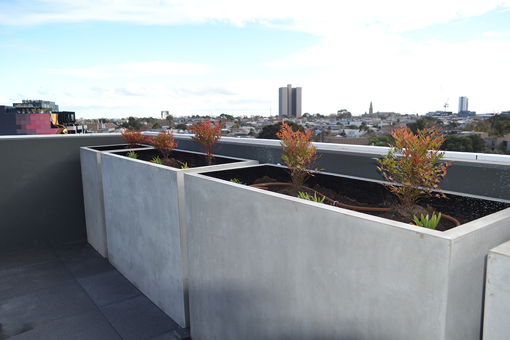lakehouse-south-melbourne-apartment-balcony-planters.jpg