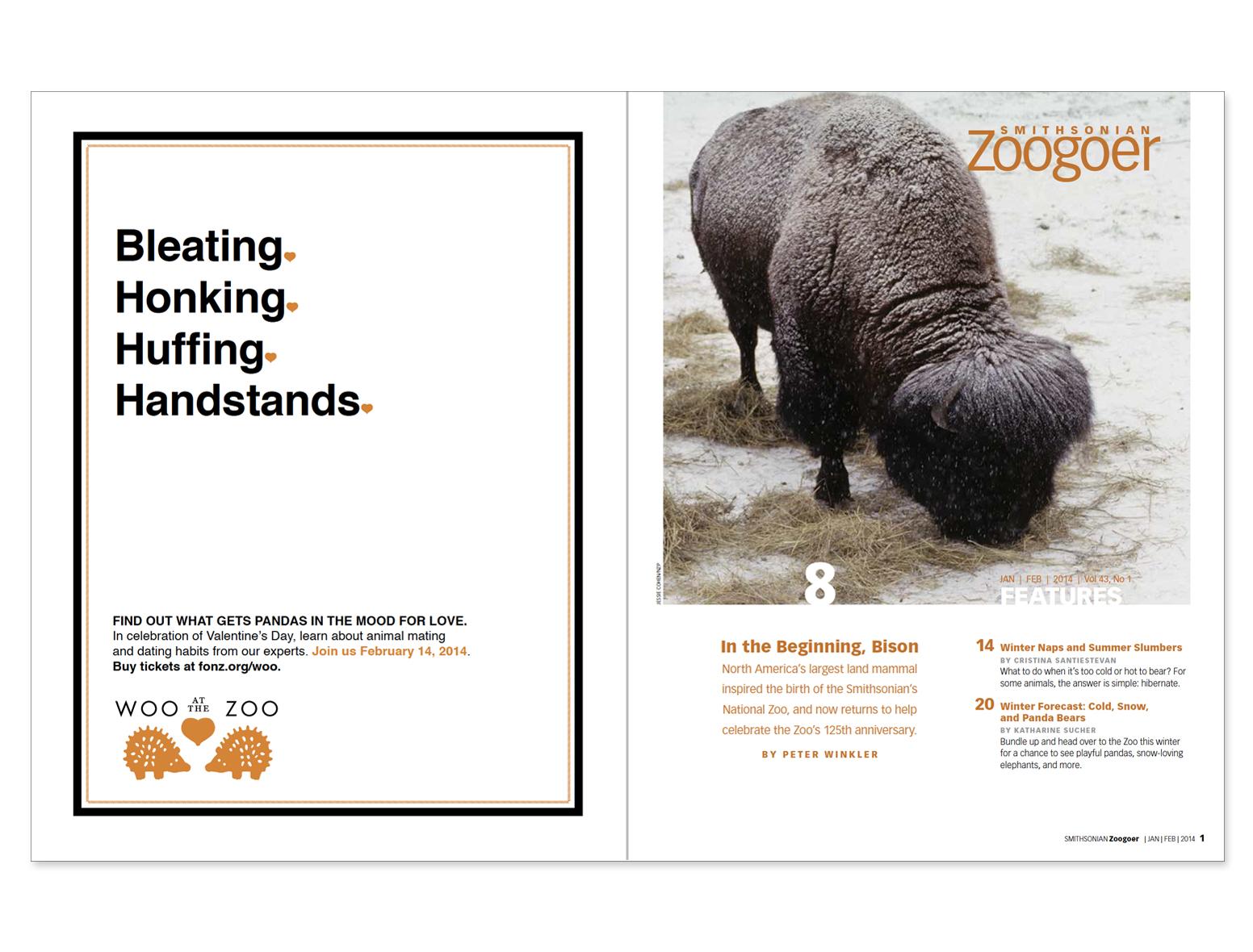 Zoogoer2.jpg