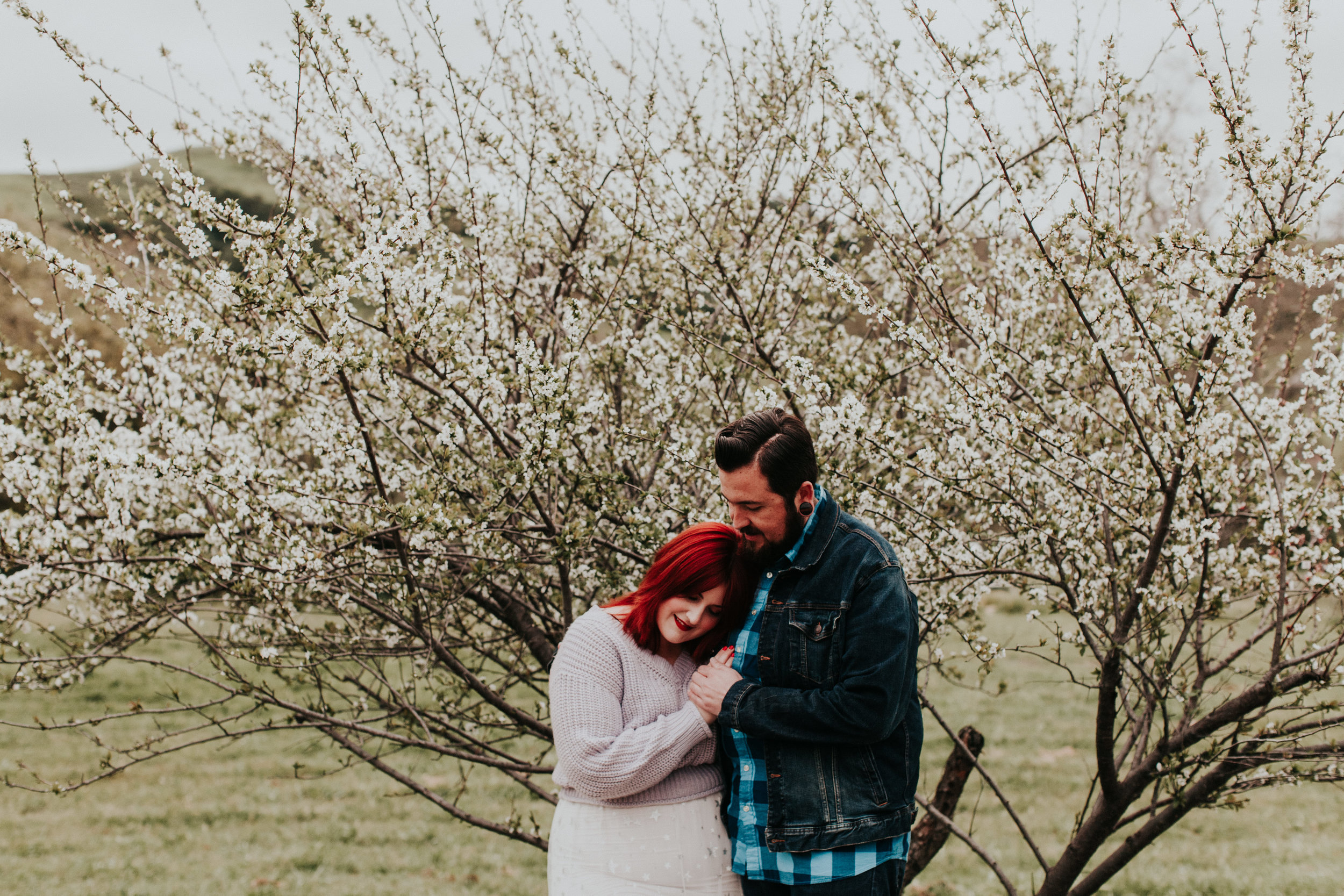 Higuera Ranch engagement couple cherry blossom