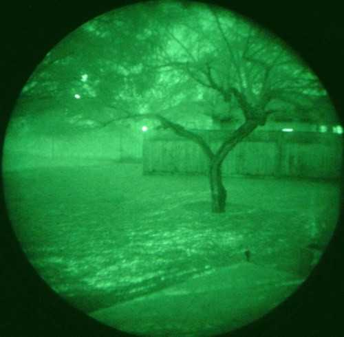 night_vision.htmgen2tree.jpg