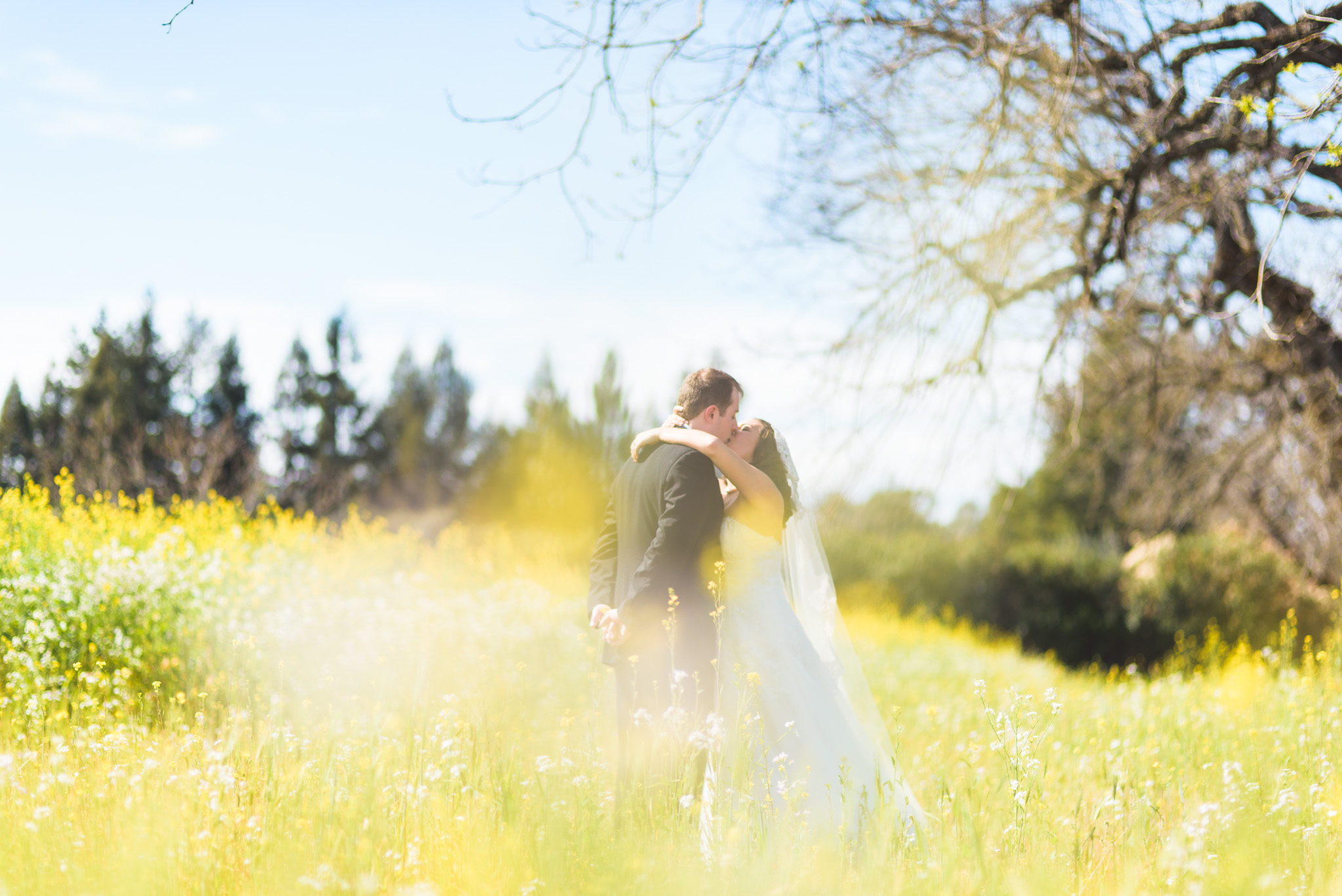 Sonoma_Backyard_Wedding-Chuck_Caroline-021.jpg