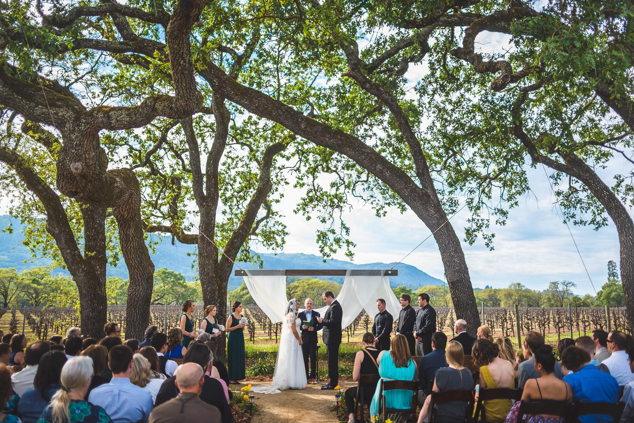 Sonoma_Backyard_Wedding-Chuck_Caroline-034.jpg