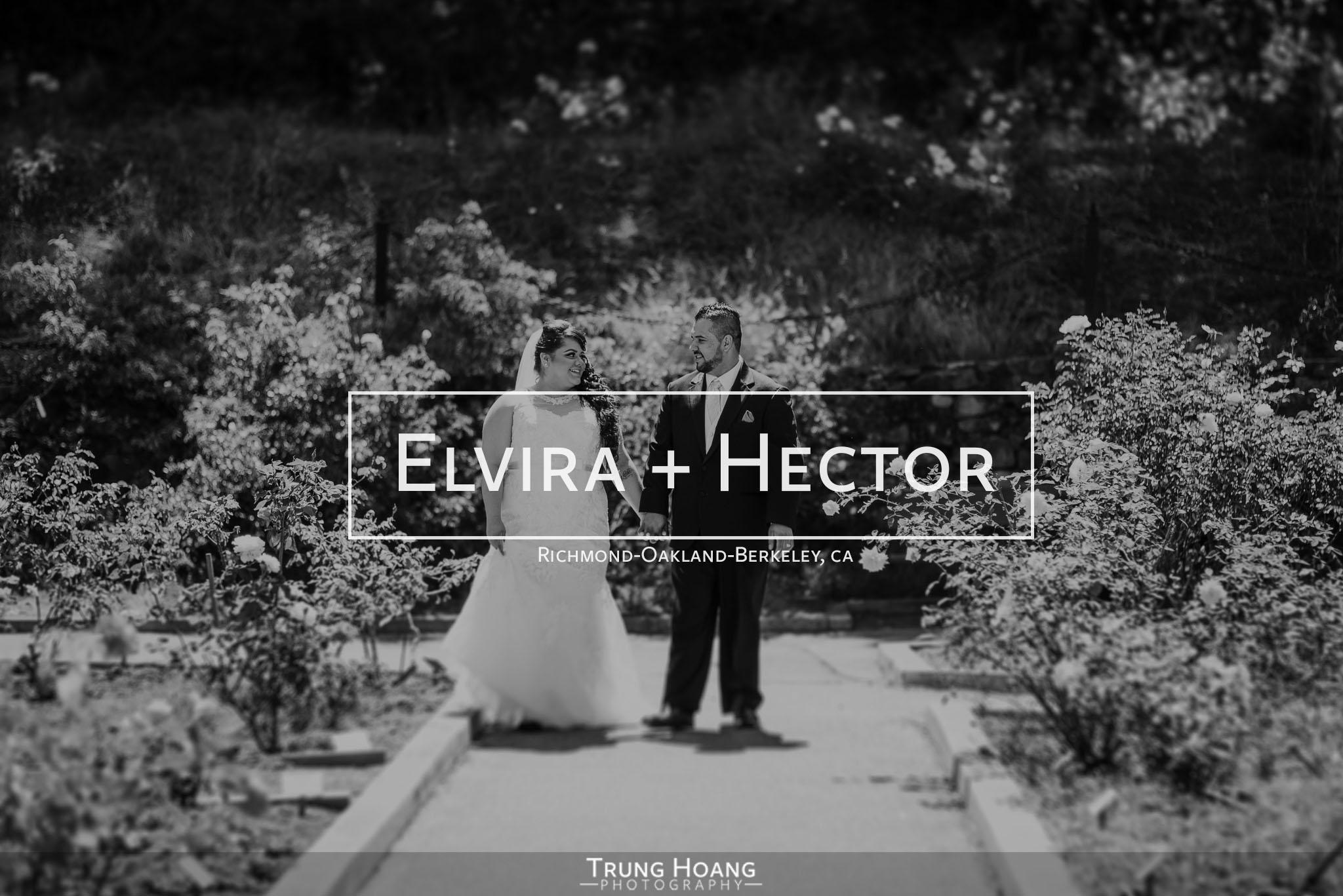 20150718_ElviraHectorBlog-001.jpg