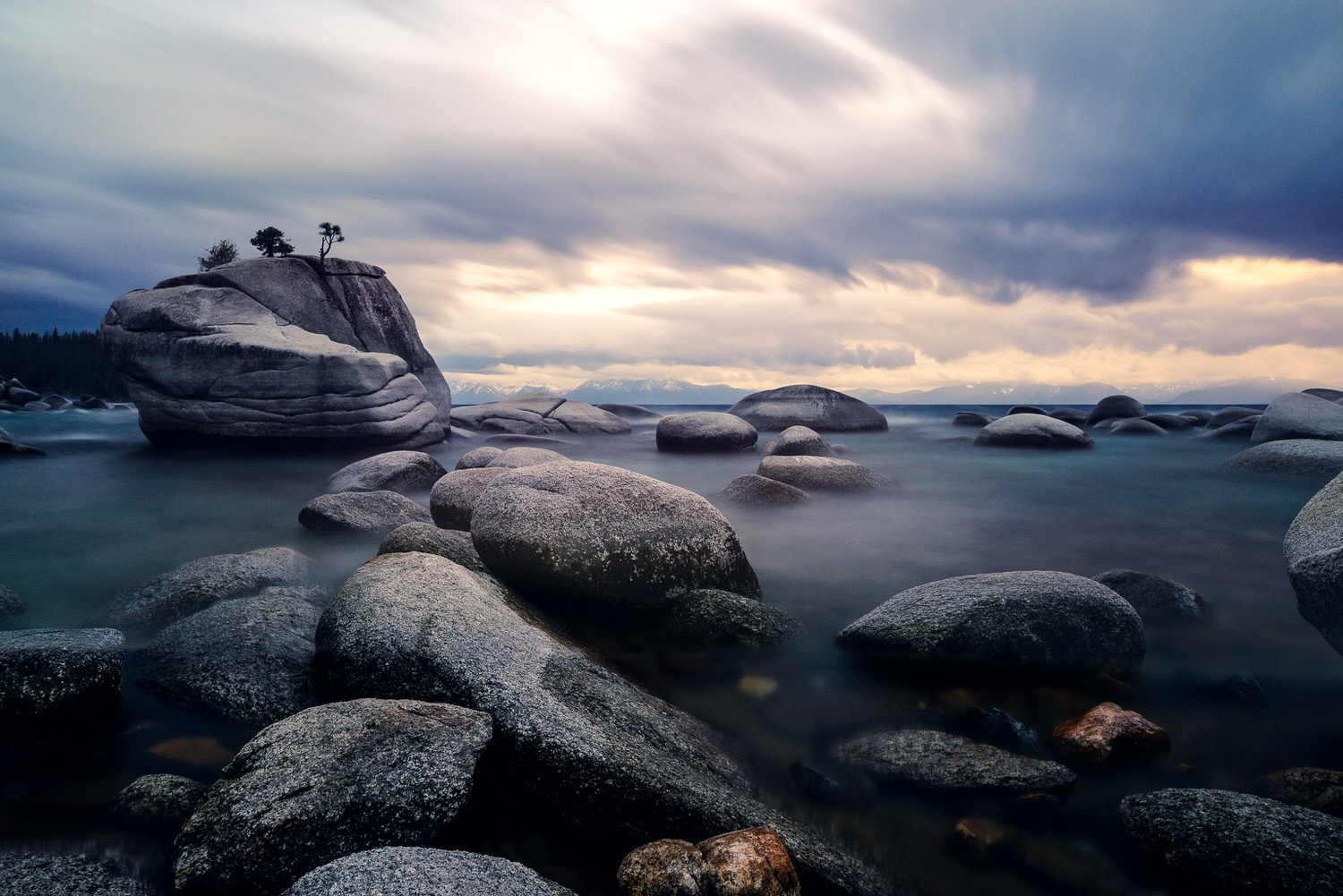 Storm and Serenity - Bonsai Rock