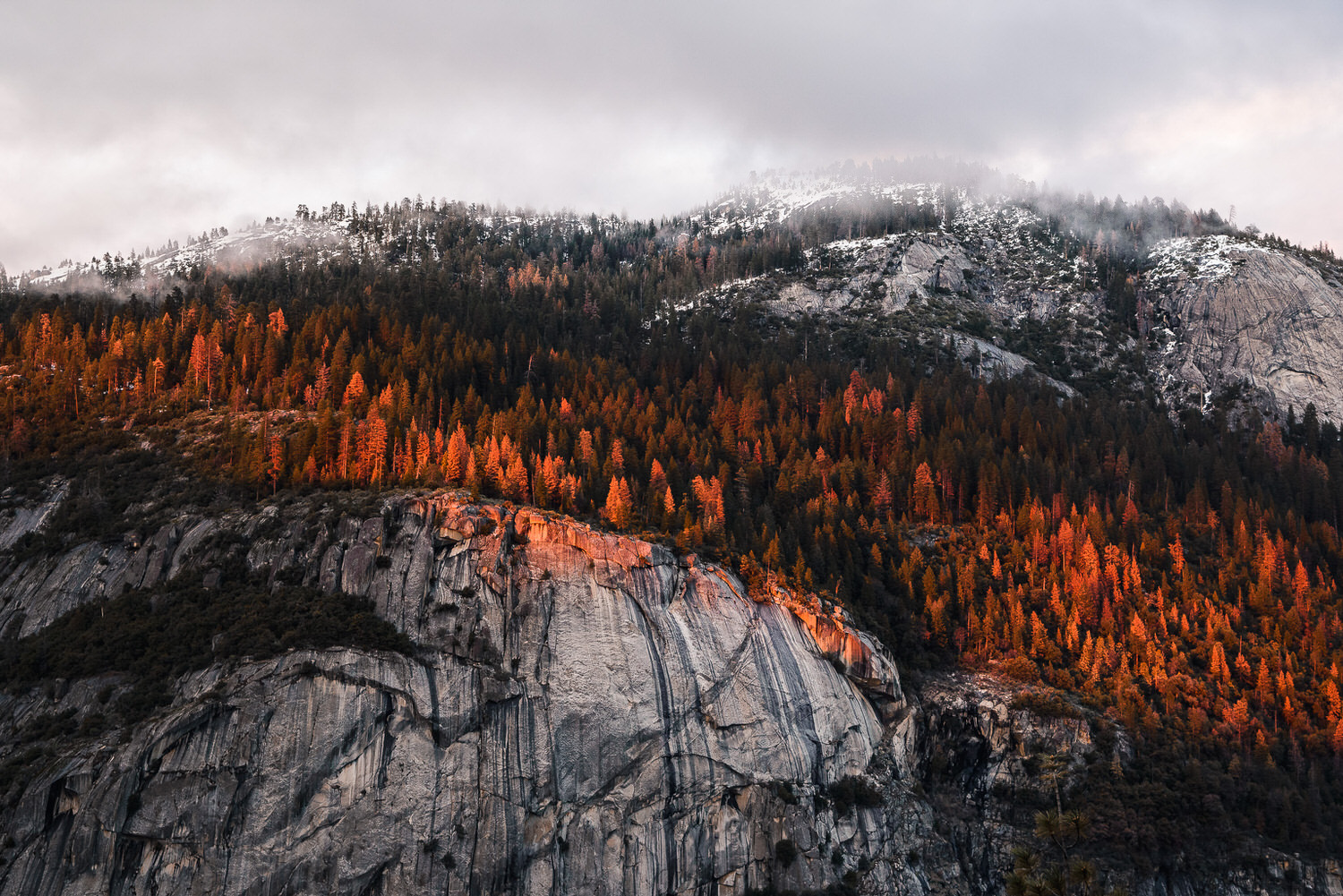 Line of Fire - Yosemite