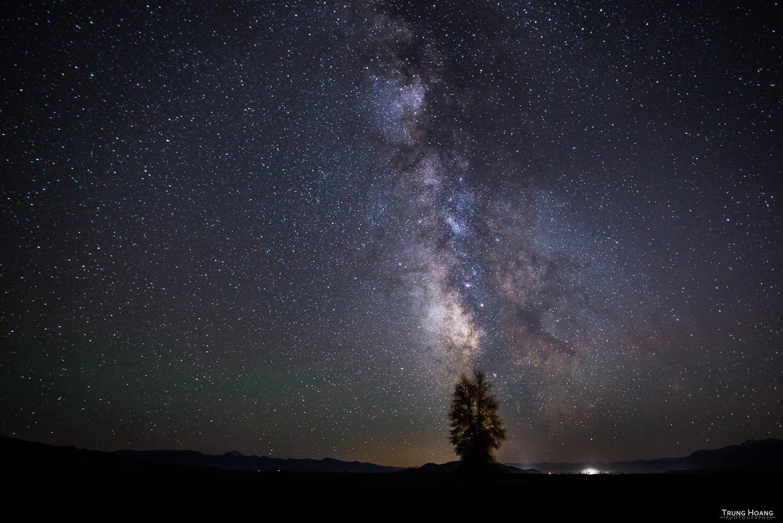 Lone Tree Galaxy