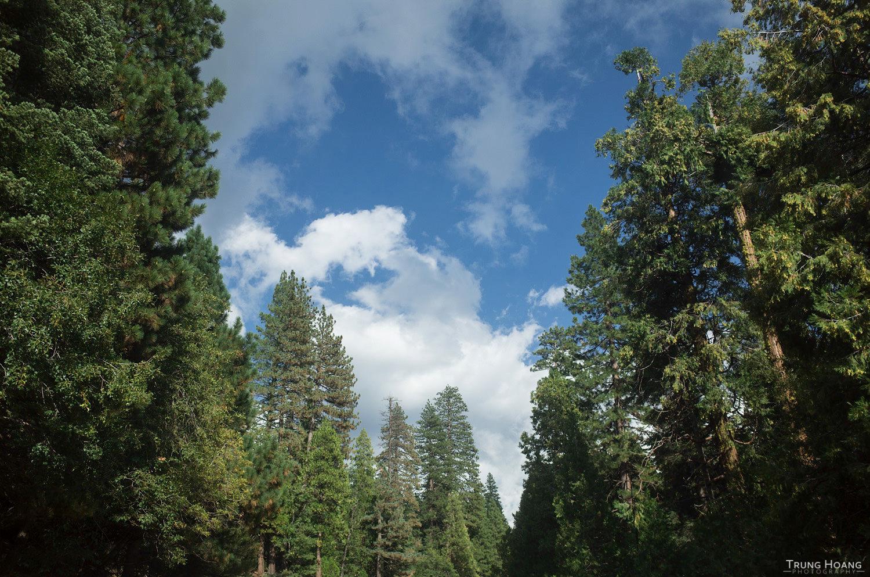 CA-50 to South Lake Tahoe