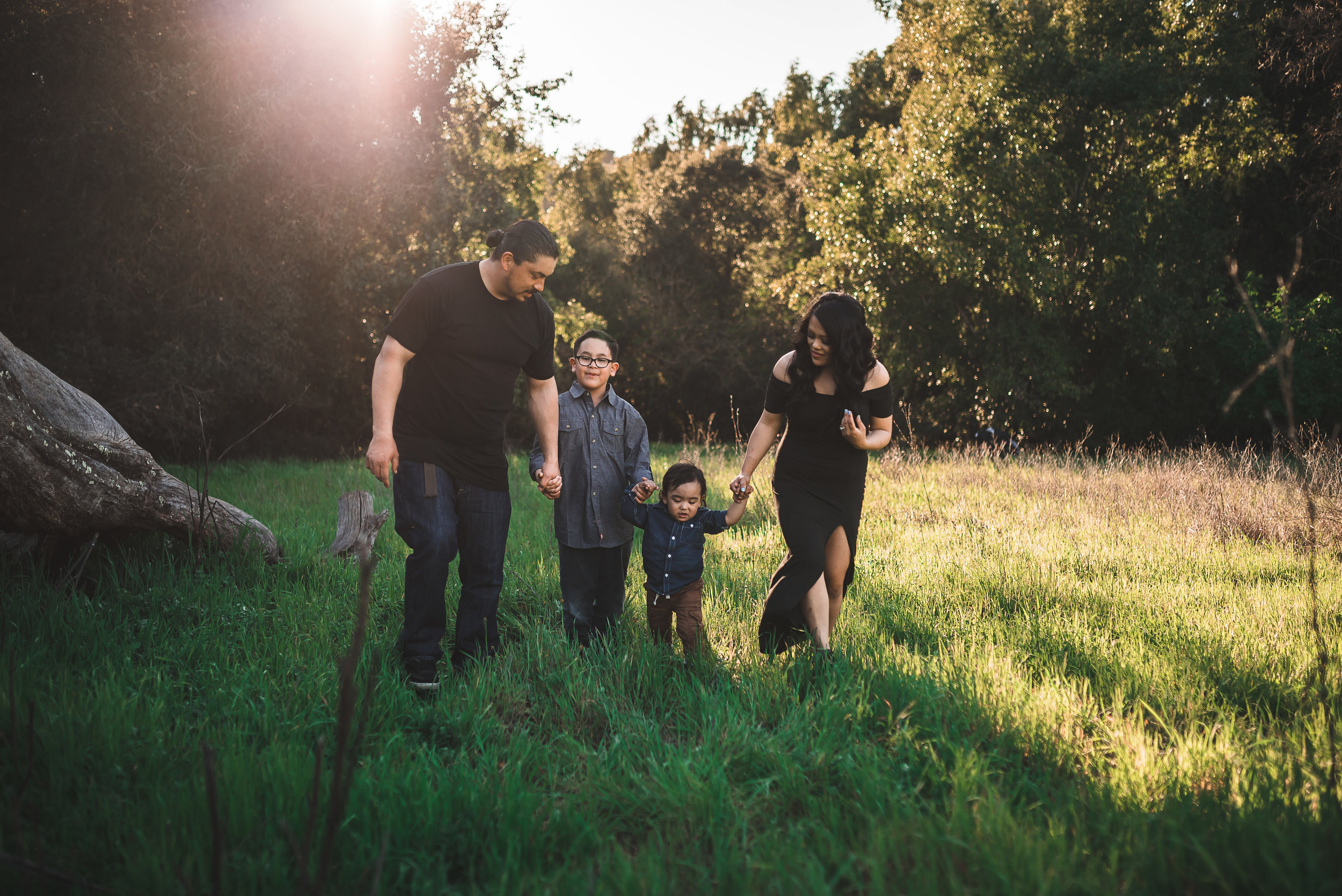 Family Sessions starting at $375 -