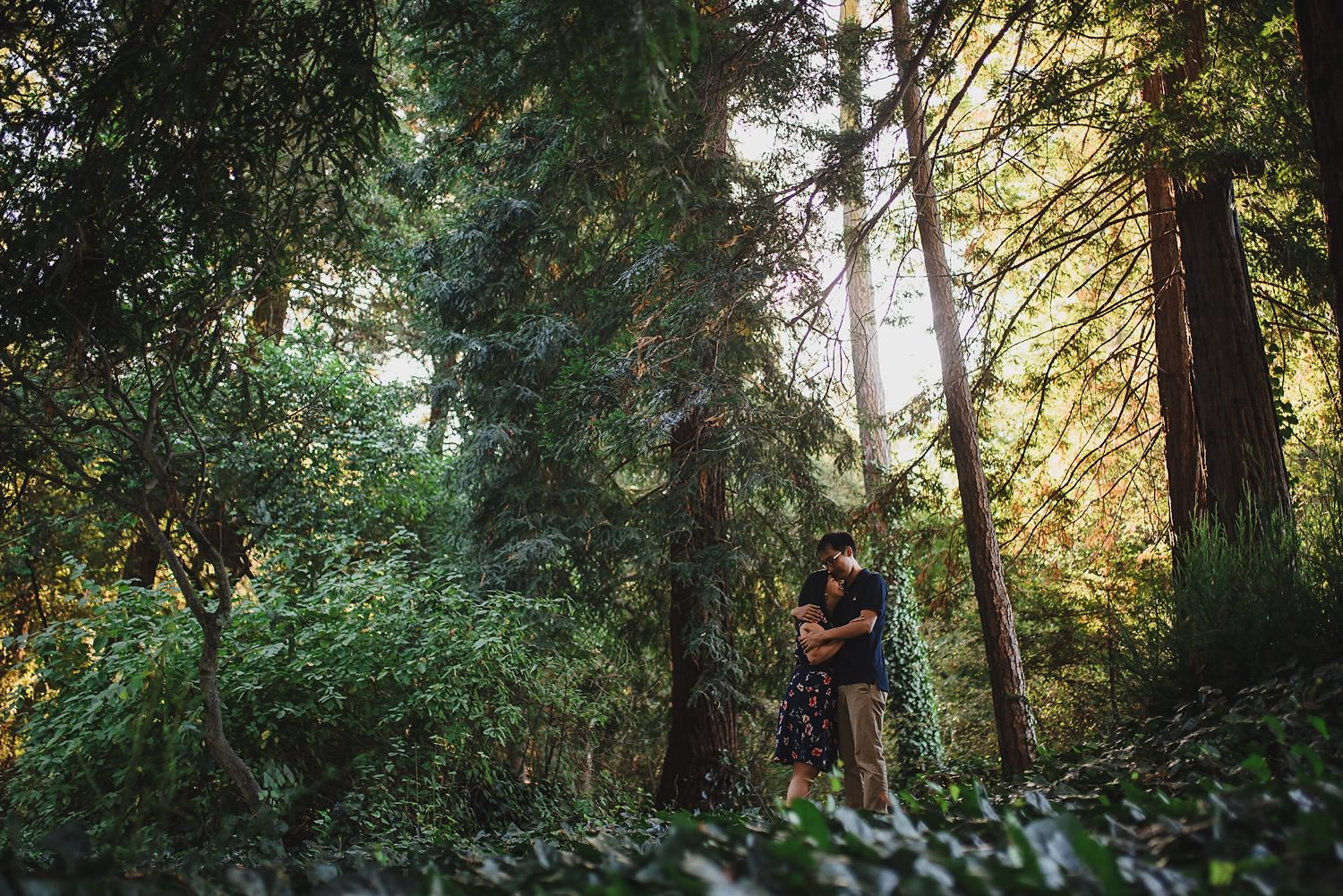 Bay Area Forest Engagement Photos