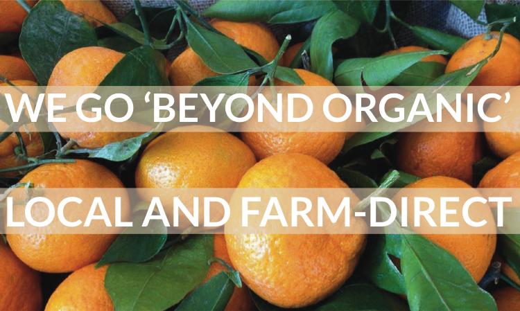 beyond organic mandarins.png