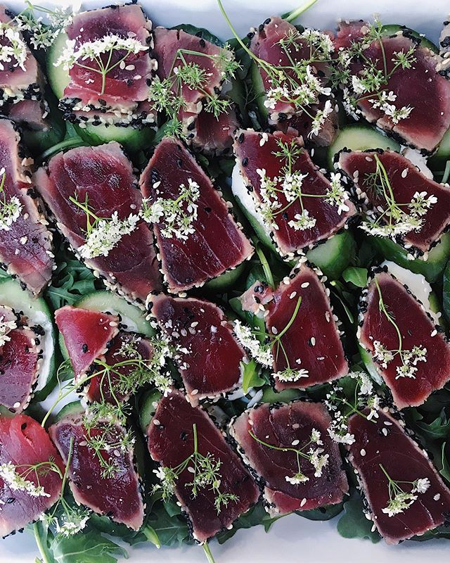 seared ahi tuna with wasabi creme fraiche, cucumber & cilantro flowers—is exactly what we need in this heat 🥒 🔥#custom #canapés #catering #urbanradish