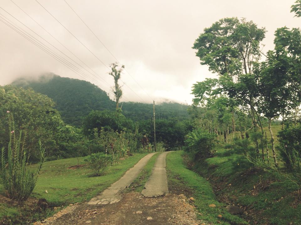 Cerro Chato 4.jpg