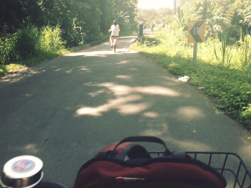 PV_Biking.jpg