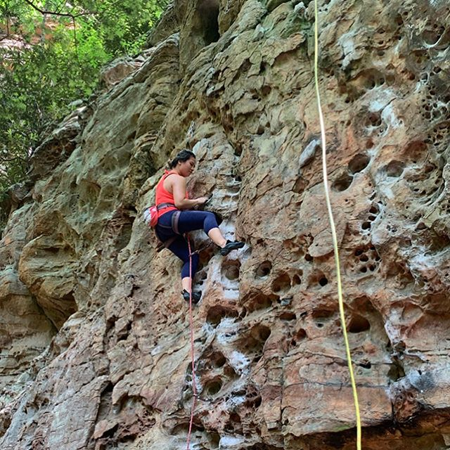 #kentucky #climbing trip highlights: the milipede that was in one of my holds, catching a ride in someone's pickup truck & being told my blood is disgusting (to mosquitoes) 😂  #rrg #redrivergorge #girlswhoclimb #rockclimbing #miguelspizza #sportclimbing #getoutside