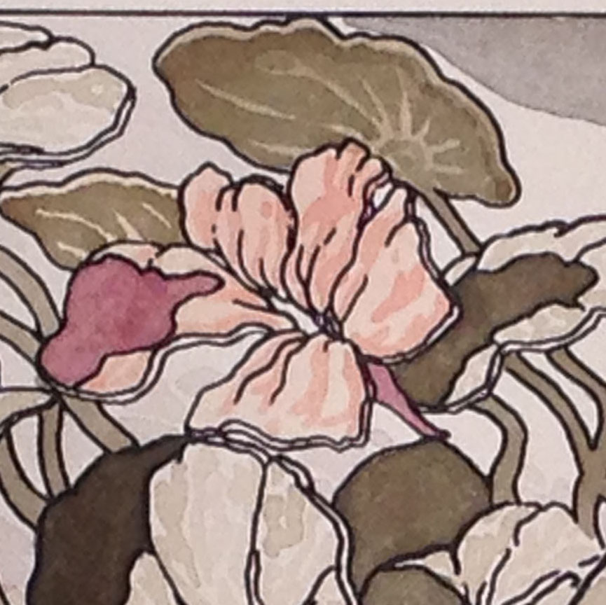 This detail of the hand-colored version of the print reveals softer edged forms and more subtle patterns.