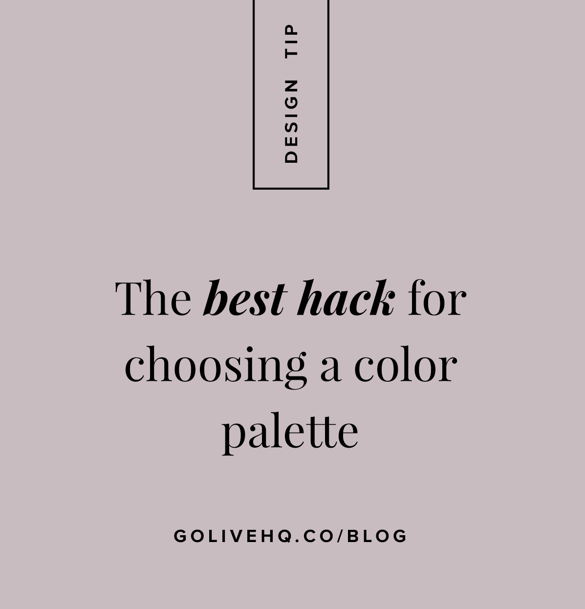how to choose a color palette for your brand by go live hq
