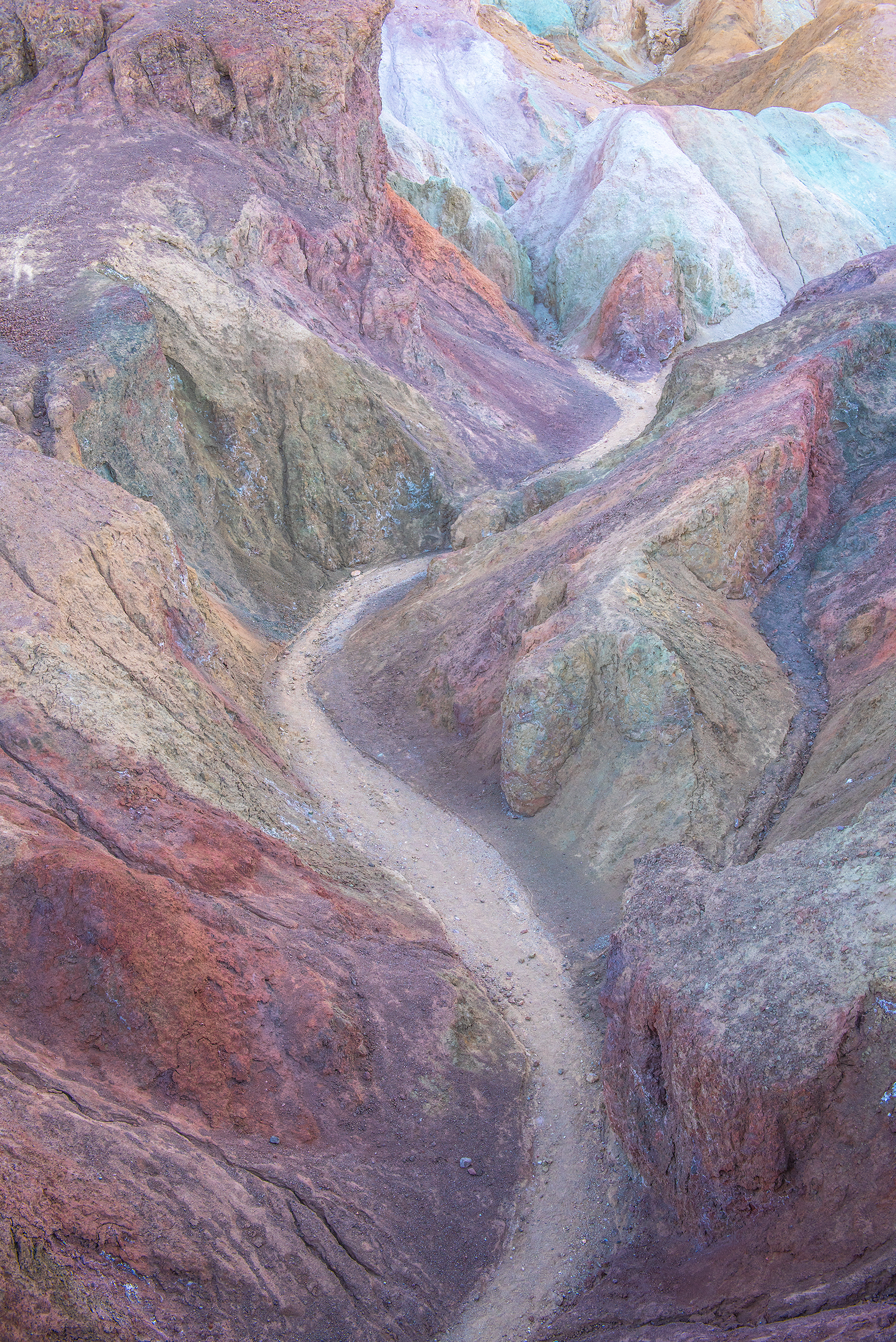 deathvalleyartist2.jpg