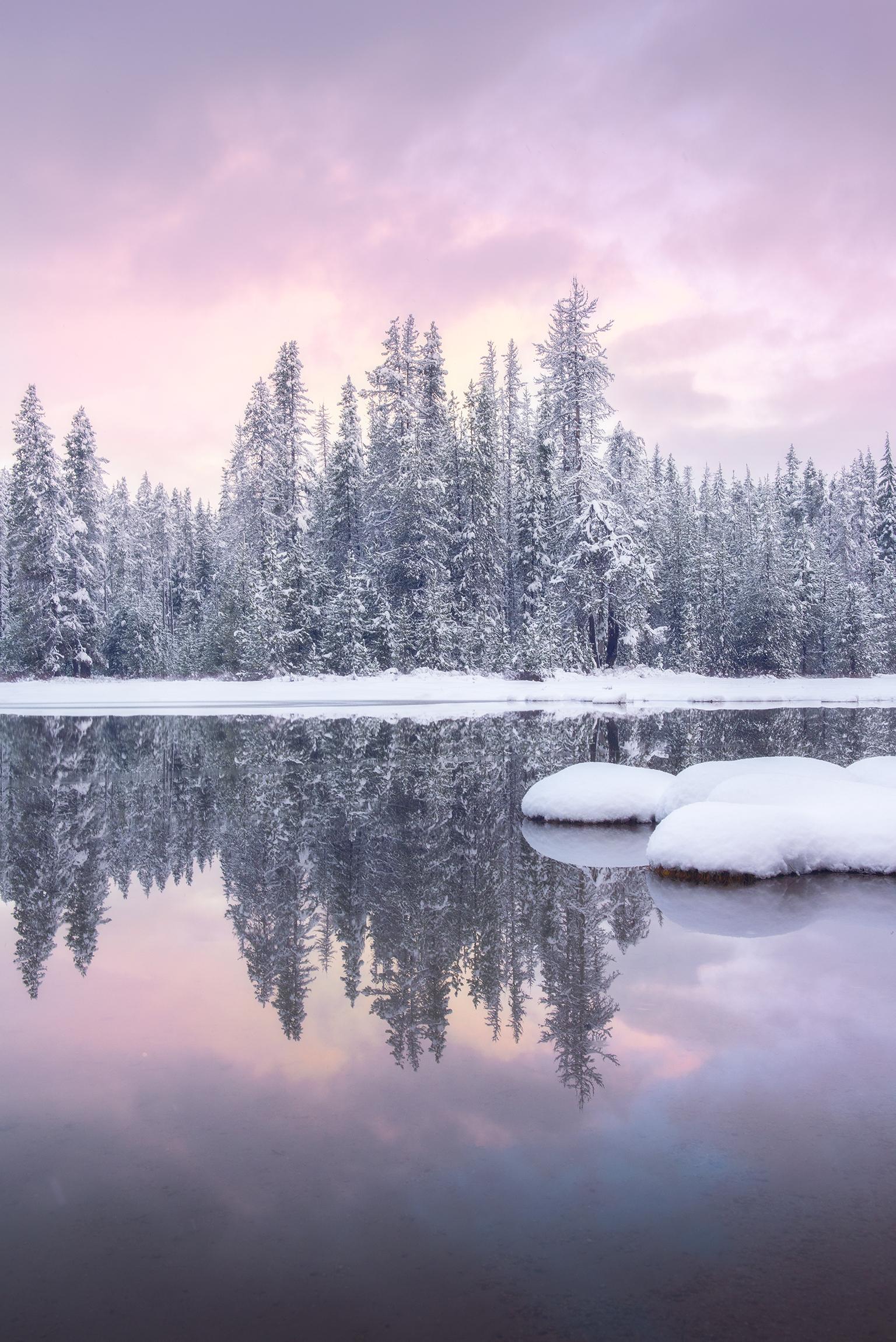 winterwarmth.jpg