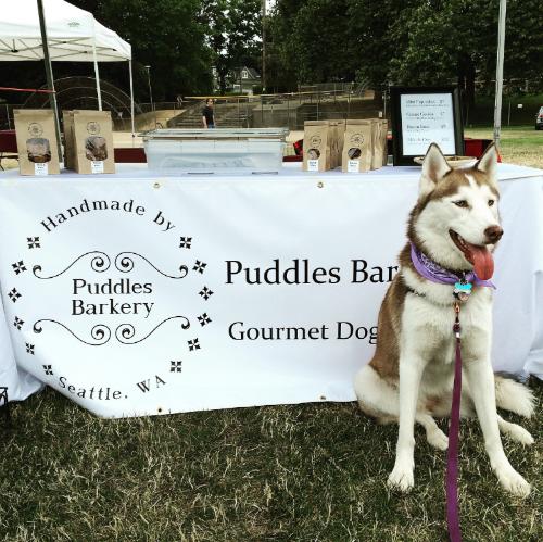 Kora, Spokes-puppy at Queen Anne Days Summerfest
