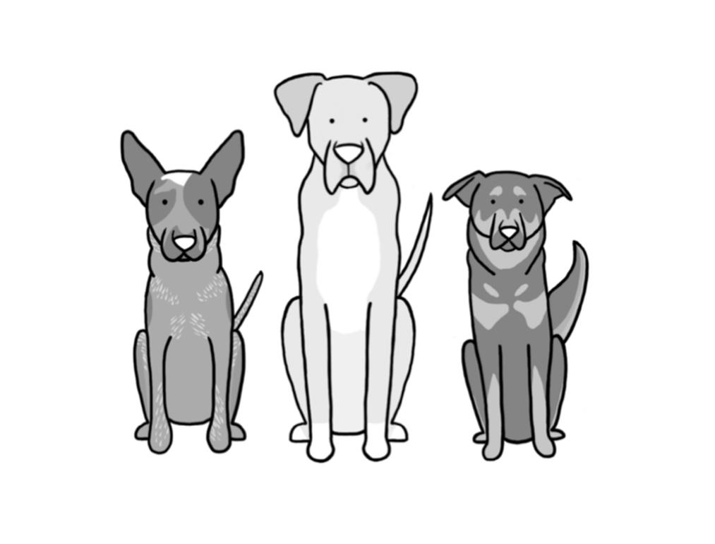 pup draw all dog kind.jpg
