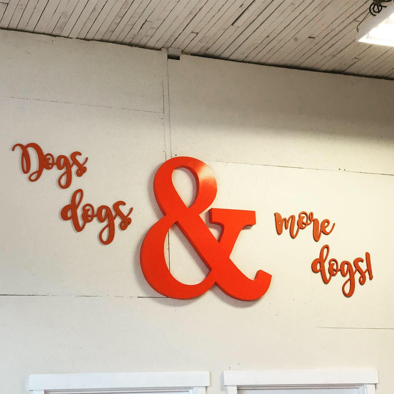 Good Dog 3.JPG