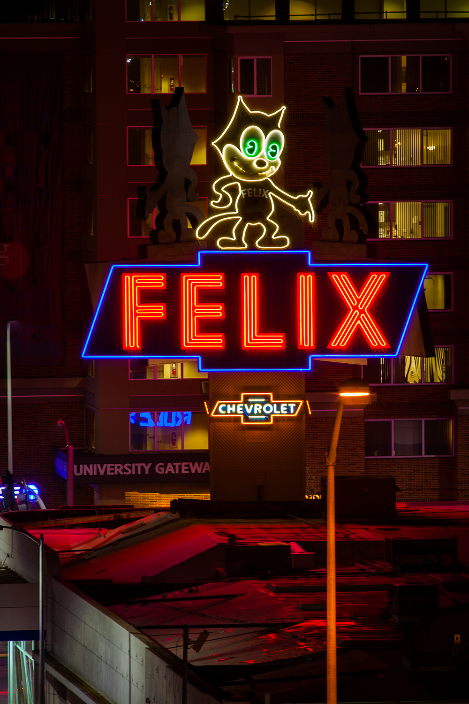 Felix MG_1115.jpg