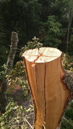 Extensive damage from lightning strike