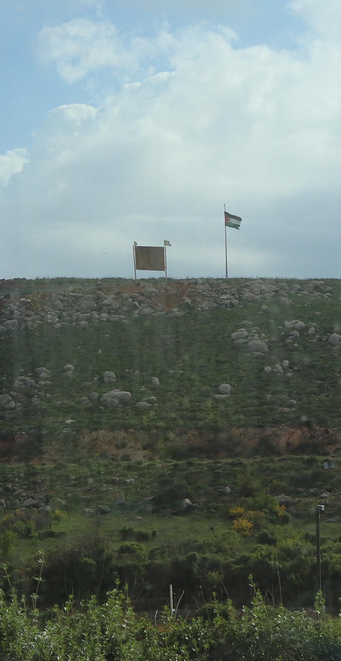 lower quality palestinian flag.jpg