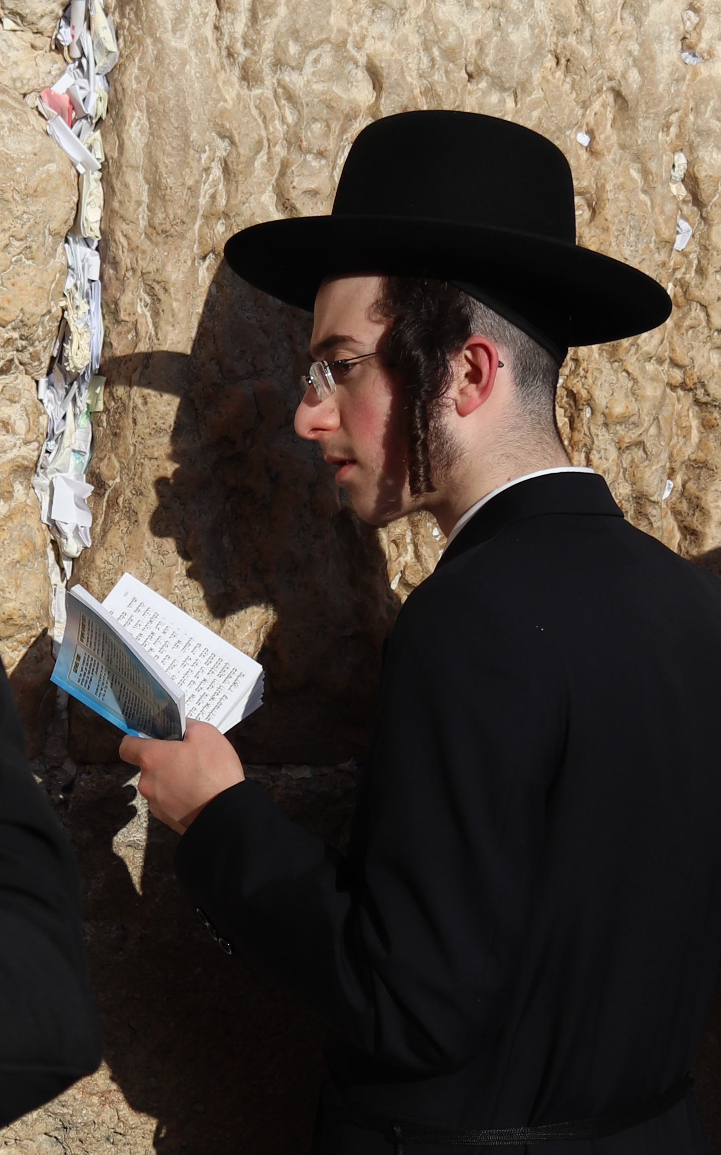 western wall praying cropped 2.jpg