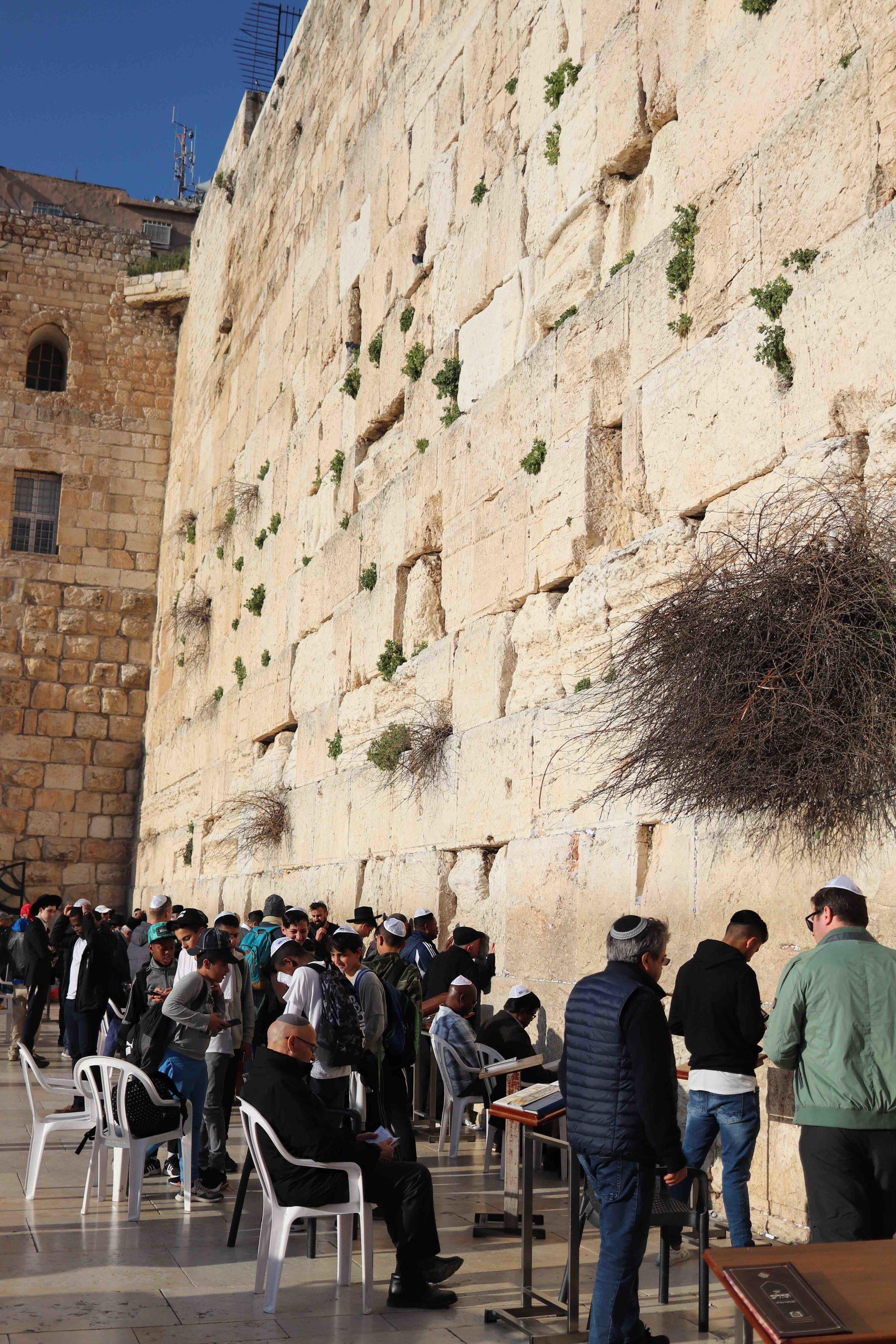 western wall wide smaller.jpg
