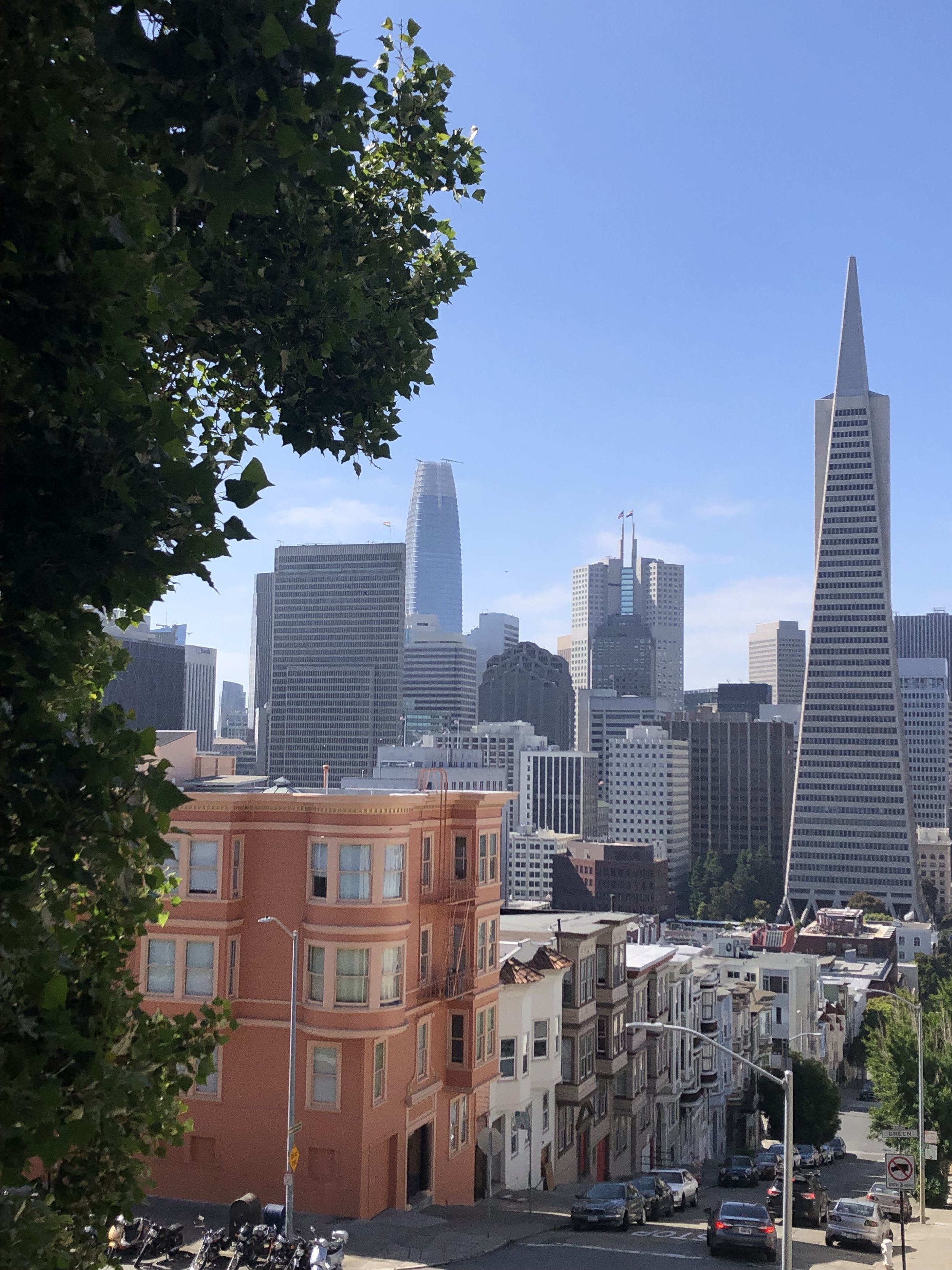 Downtown San Francisco from Telegraph Hill.