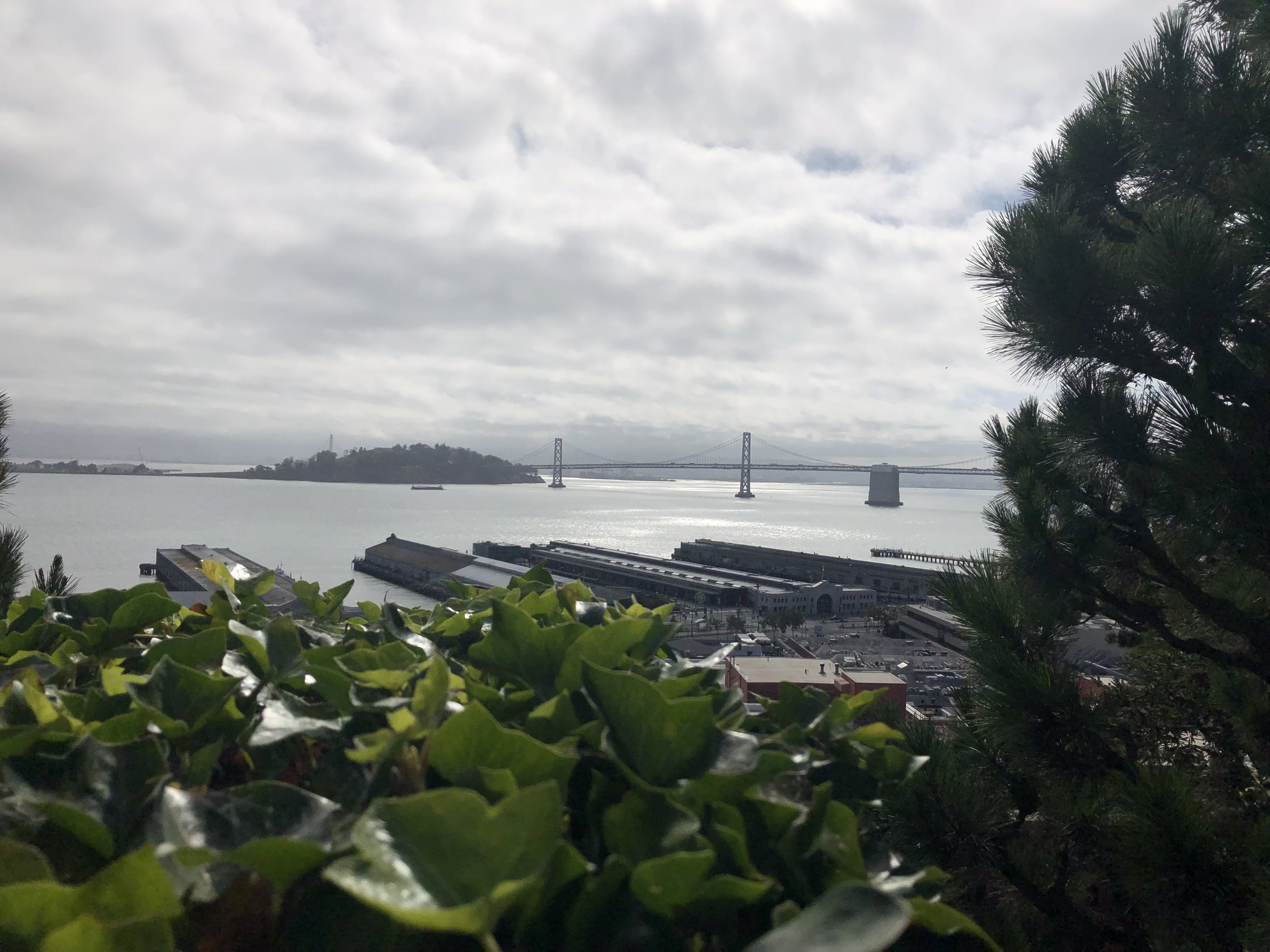 The San Francisco-Oakland Bay Bridge from Telegraph Hill.