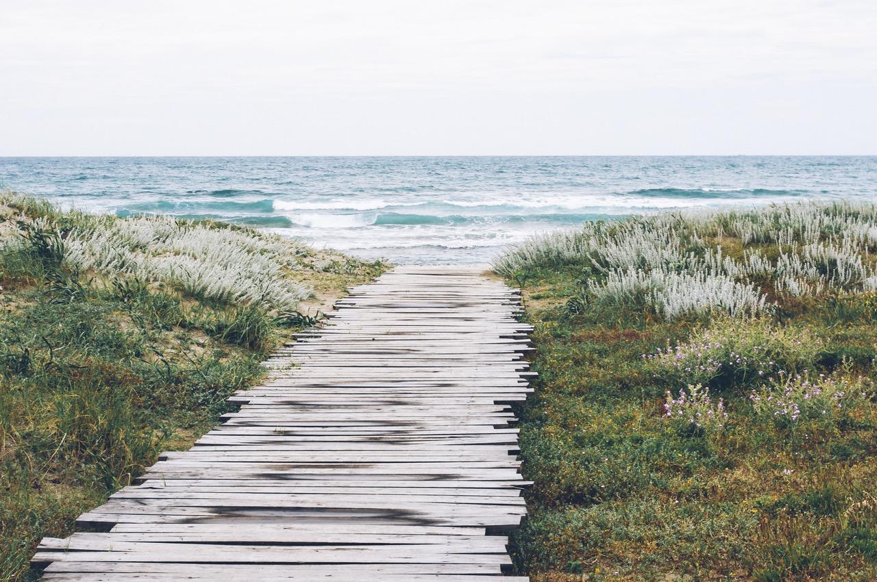 landing-stage-sea-nature-beach.jpg
