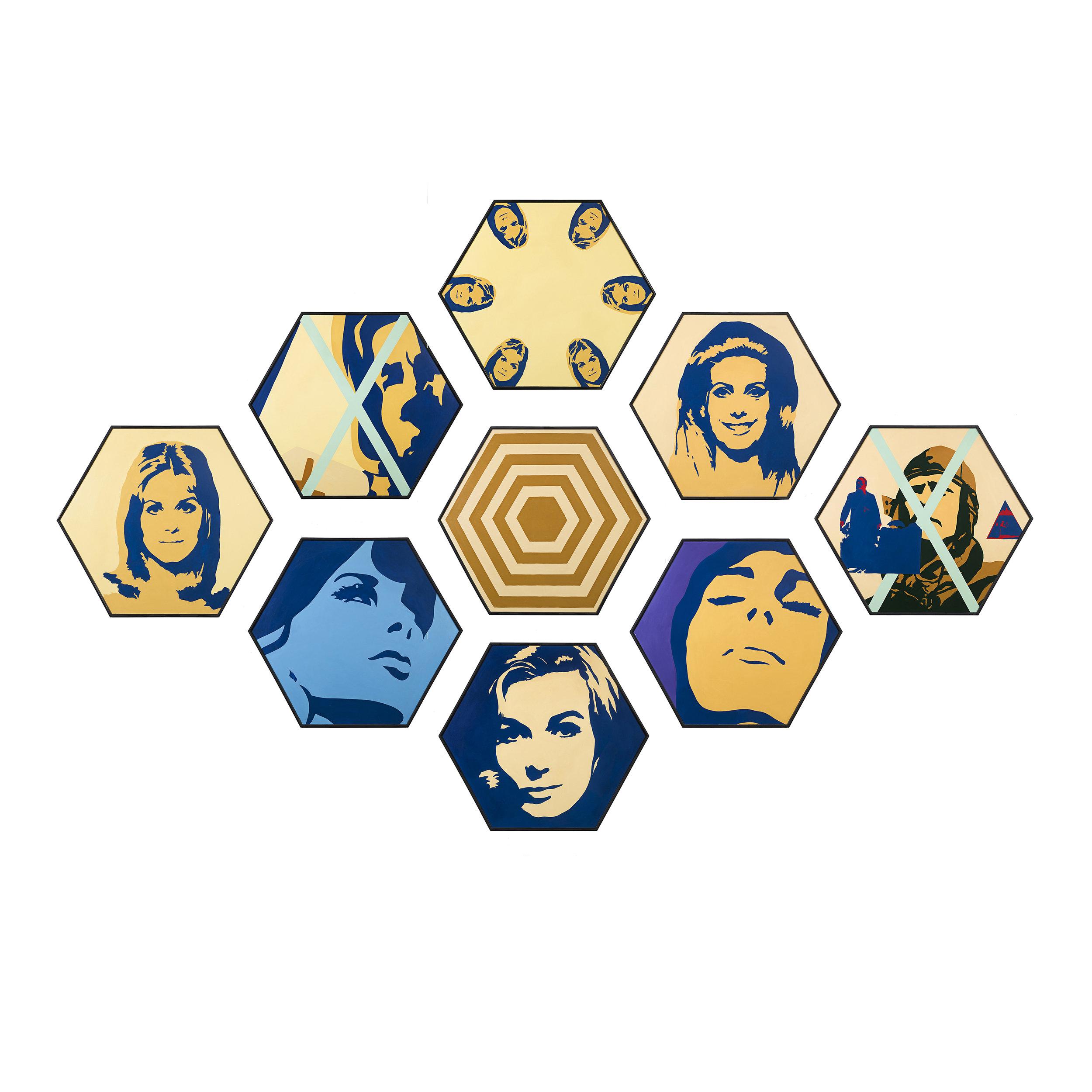 Hexagonal Pictures combination 1.jpg