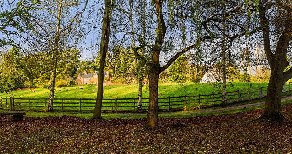 shottery_Panorama1.jpg