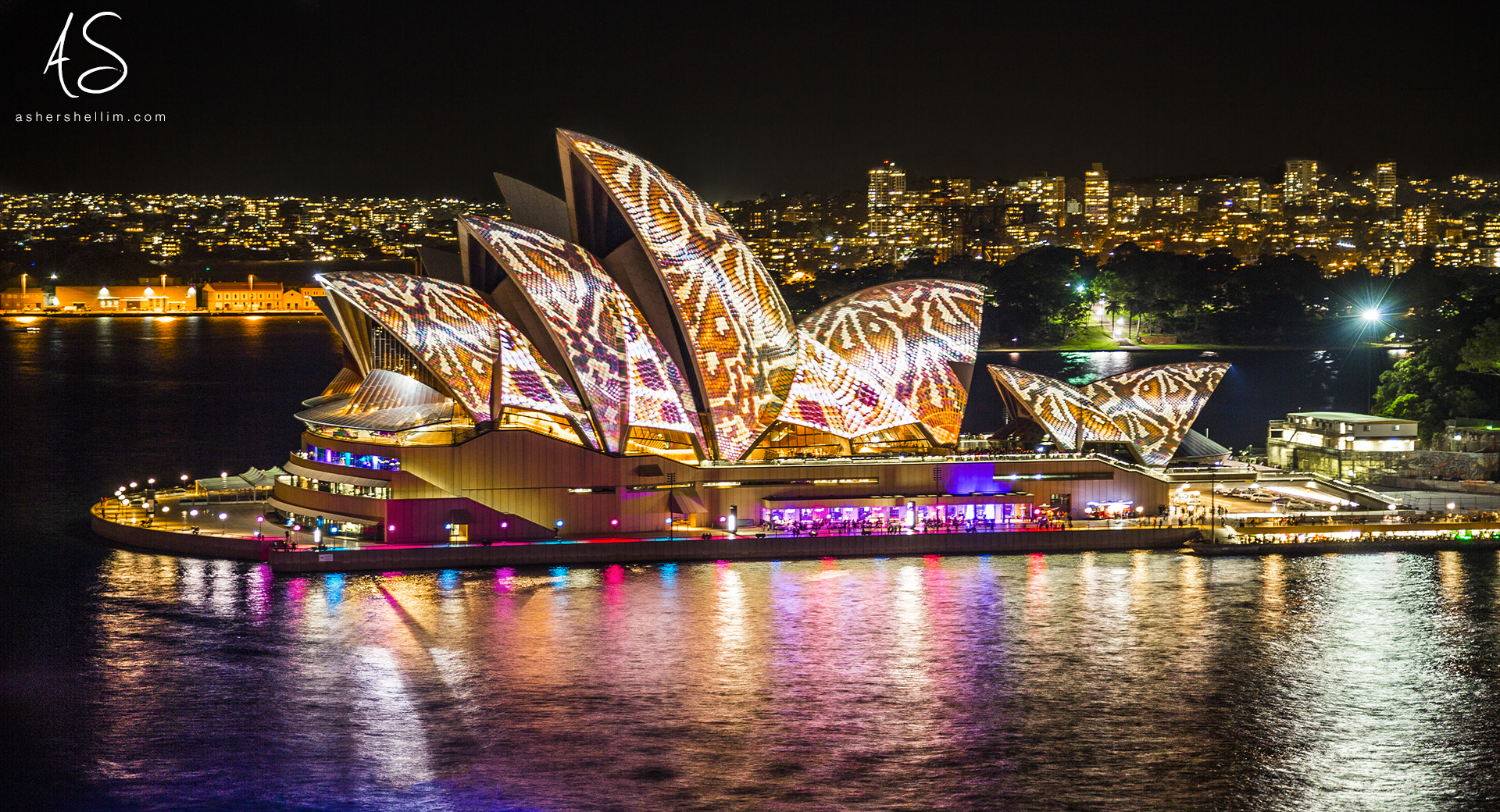 ' Sea Snake ' - Winner of the Sydney.com, Vivid 2014 Photography Competition