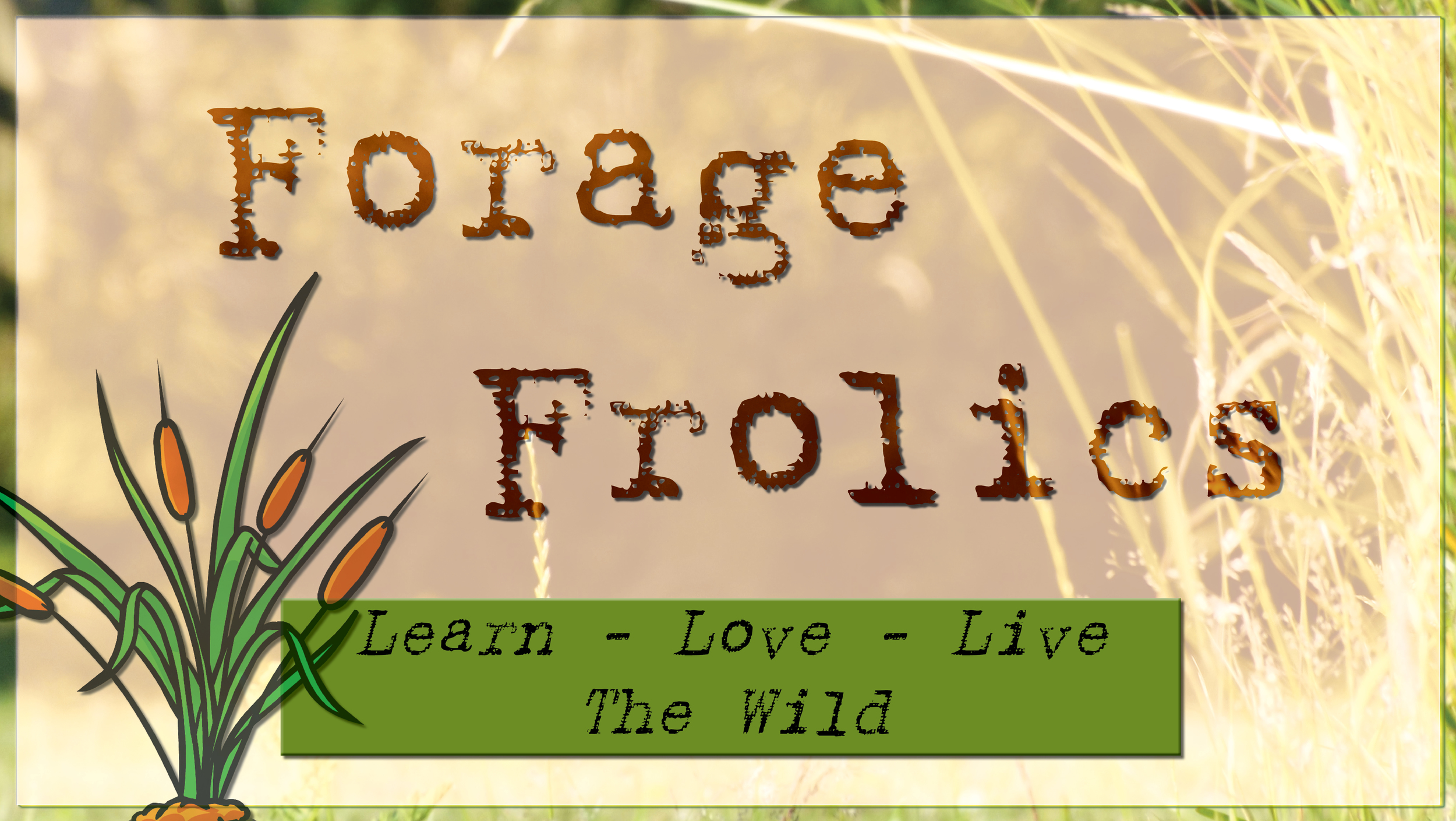 ForageFrolics - Foraging courses northampton, east midlands. Learn what Edible weeds and plants you can eat.