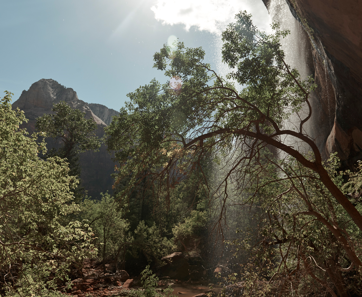 Waterfall on Emerald Pools hike in Zion national park.Kirsty Owen photography