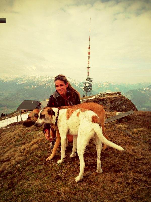 Brigitte und Dani auf dem Niederhorn im Berner Oberland - gemeinsam mit ihren Laufkollegen Bonnie und Clyde.