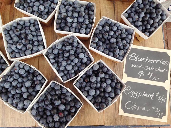 Blueberries. Eggplant. Okra. (Taken with my trusty little iPhone.)