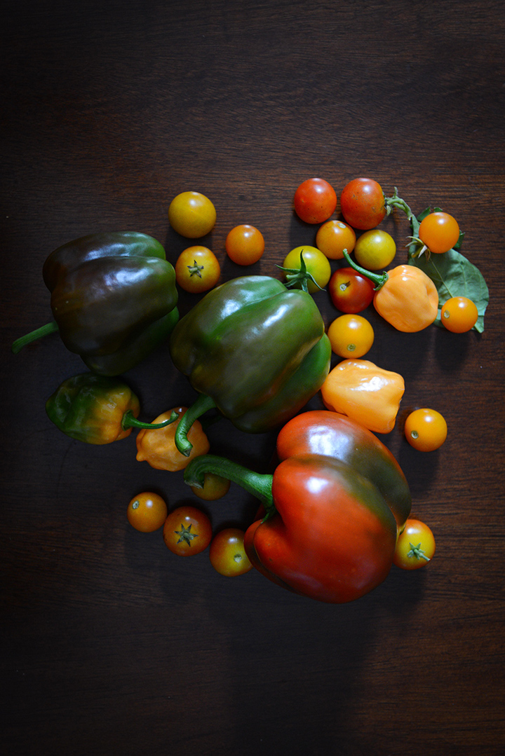 The end of my summer bounty.