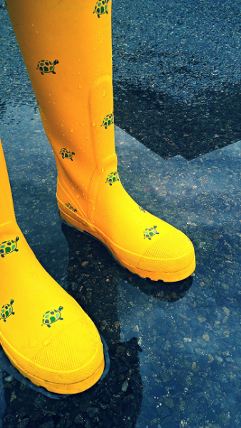 My yellow turtle  galoshes.