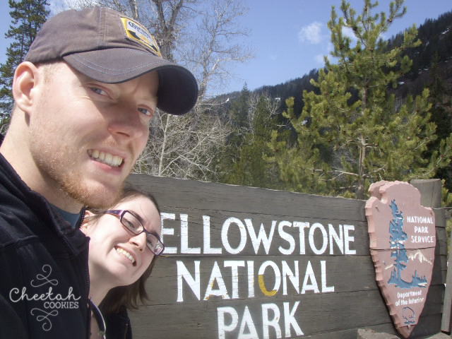 Yellowstone - May 6th 2008